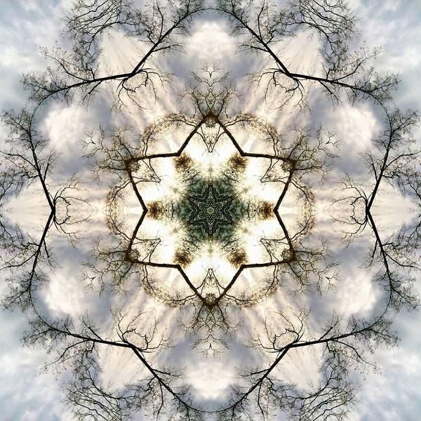 Photograph - Treescape Sky by Derek Gedney