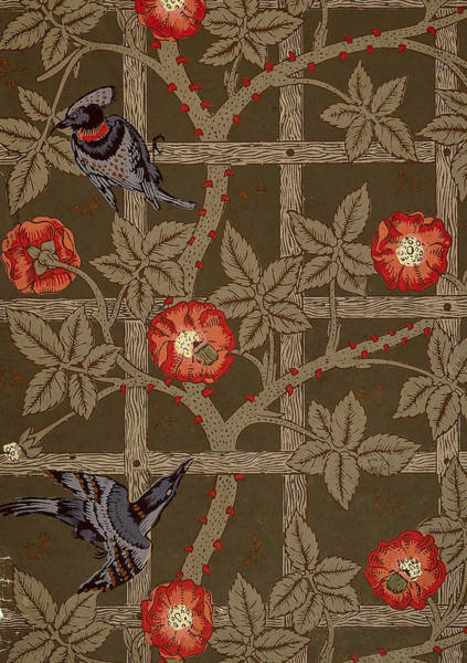 Wallpaper Mixed Media - Trellis With Birds by Philip Ralley