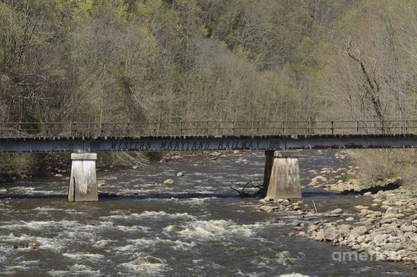 Photograph - Trestle On Blackwater by Randy Bodkins