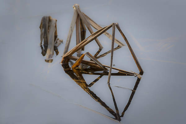Photograph - Triangles by Robert Mitchell