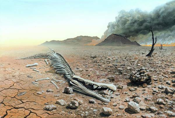 Arid Climate Wall Art - Photograph - Triassic-jurassic Extinction by Richard Bizley/science Photo Library
