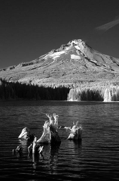 Photograph - Trillium Lake by Ken Dietz