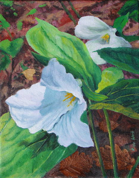 Wall Art - Painting - Trilliums Iv by Rose Wark