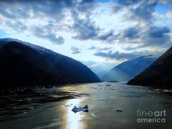 Photograph - Trip To Sawyer Glacier by Gena Weiser