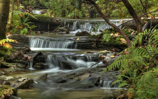 Photograph - Triple Falls by Greg Vizzi