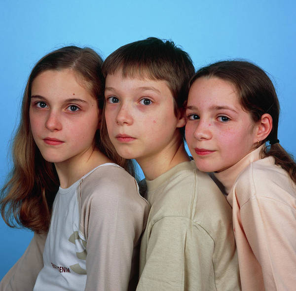 Triplets Photograph - Triplets by Alex Bartel/science Photo Library