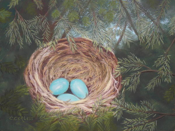 Pastel - Triplets by Carol Corliss