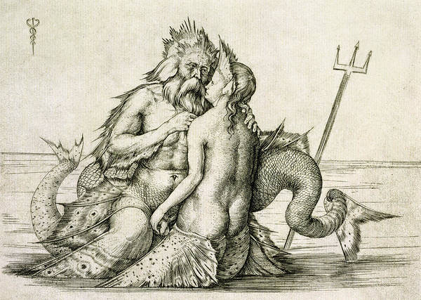 Erotic Drawing - Triton With The Nereid by Jacopo de' Barbari