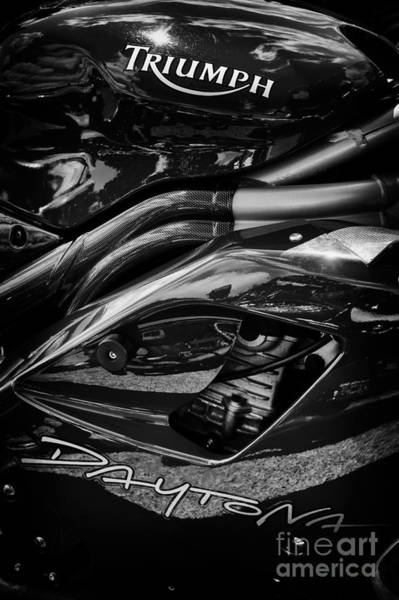 Photograph - Triumph Daytona Monochrome by Tim Gainey