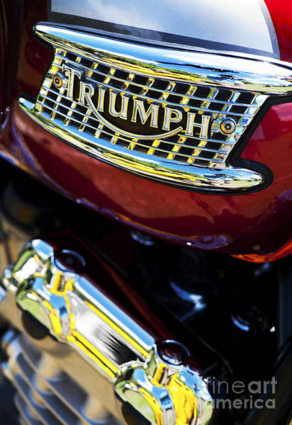 Photograph - Triumph Thunderbird  by Tim Gainey