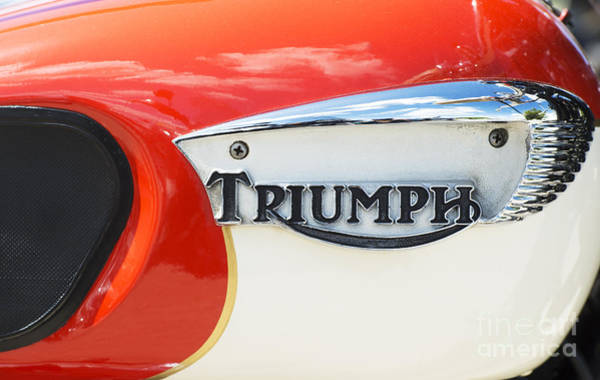 Photograph - Triumph Tiger 90 Tank Badge by Tim Gainey