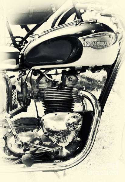Photograph - Triumph Twenty One 3ta by Tim Gainey