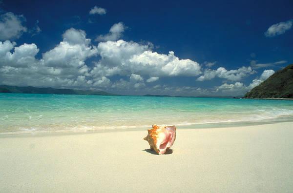 Wall Art - Photograph - Tropical Beach by F. Stuart Westmorland