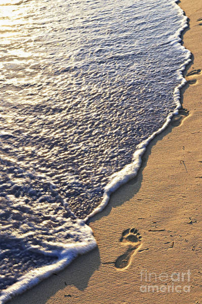 Sand Wall Art - Photograph - Tropical Beach With Footprints by Elena Elisseeva