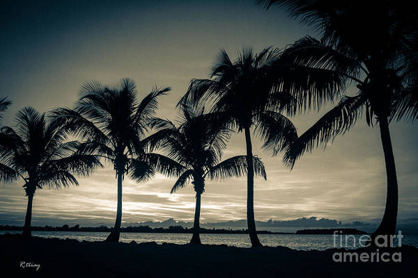 Wall Art - Photograph - Tropical Breeze Delight by Rene Triay Photography