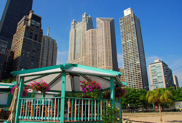 Photograph - Tropical Chicago by Lynn Bauer