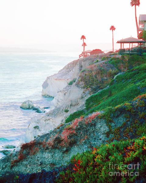 Photograph - Tropical Cliff by Richard J Thompson