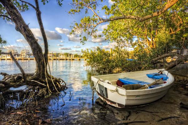 Boynton Photograph - Tropical Dreams by Debra and Dave Vanderlaan