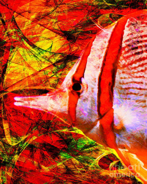 Photograph - Tropical Fish 5d24879 by Wingsdomain Art and Photography