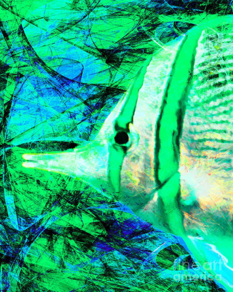 Photograph - Tropical Fish 5d24879p145 by Wingsdomain Art and Photography