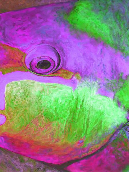 Belize Digital Art - Tropical Fishtych 05 B-center by Julie Turner