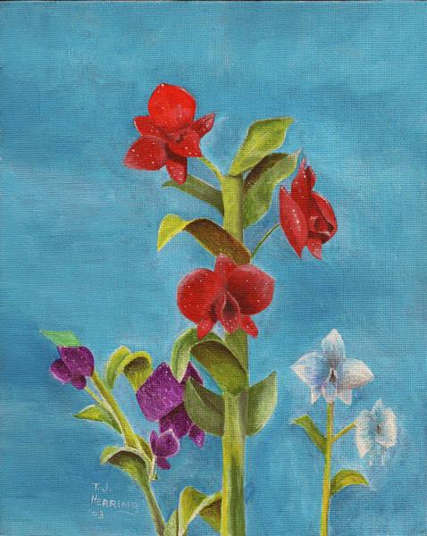 Painting - Tropical Flower by Thomas J Herring