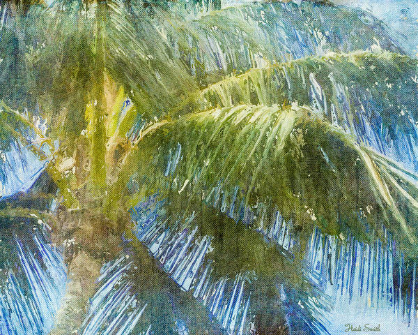 Wall Art - Photograph - Tropical Memories by Heidi Smith