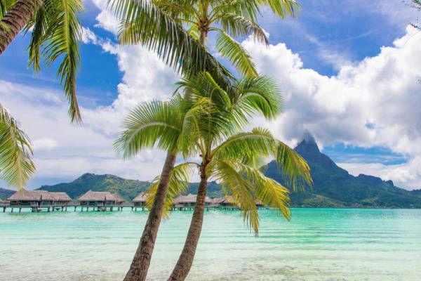 Wall Art - Photograph - Tropical Paradise, Bora Bora, French by Douglas Peebles
