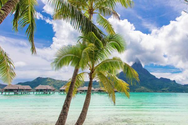 French Polynesia Wall Art - Photograph - Tropical Paradise, Bora Bora, French by Douglas Peebles