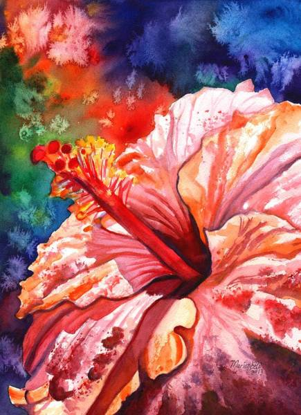Tropical Pink Hibiscus Art Print