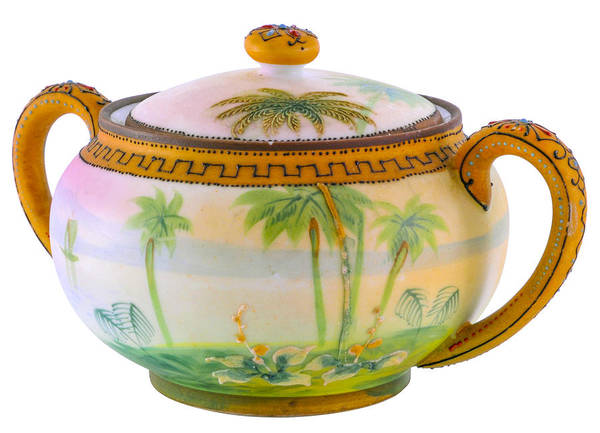 Photograph - Tropical Scene On Two Handled Pot by Lynn Hansen