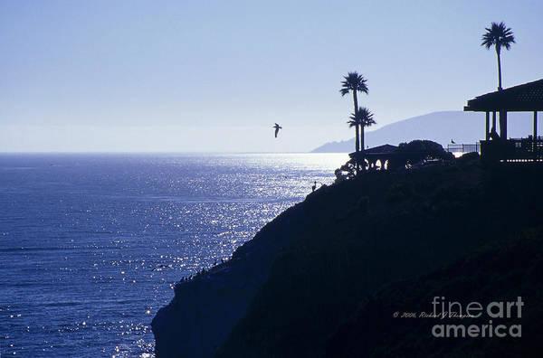 Photograph - Tropical Silhouette by Richard J Thompson