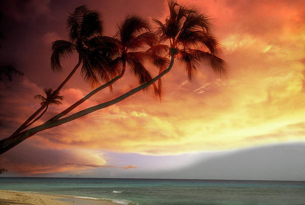 Barbados Photograph - Tropical Sunset by Lyle Leduc
