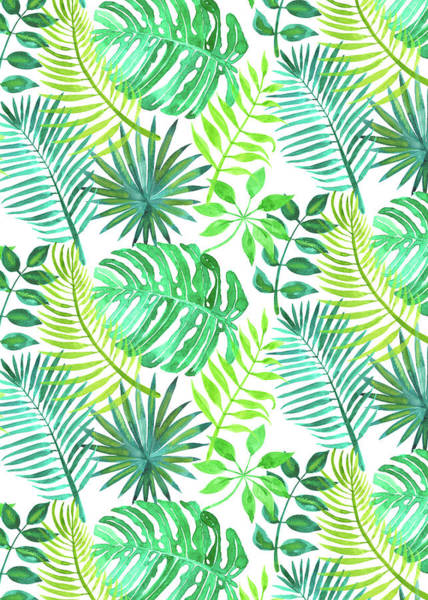 Wall Art - Painting - Tropical Watercolours Multi Leaves Design White by MGL Meiklejohn Graphics Licensing