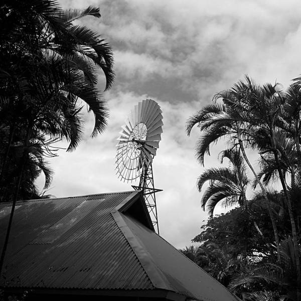 Photograph - Tropical Windmill by Richard Reeve