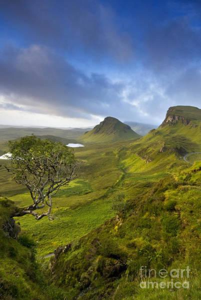 Photograph - Trotternish Ridge by David Lichtneker