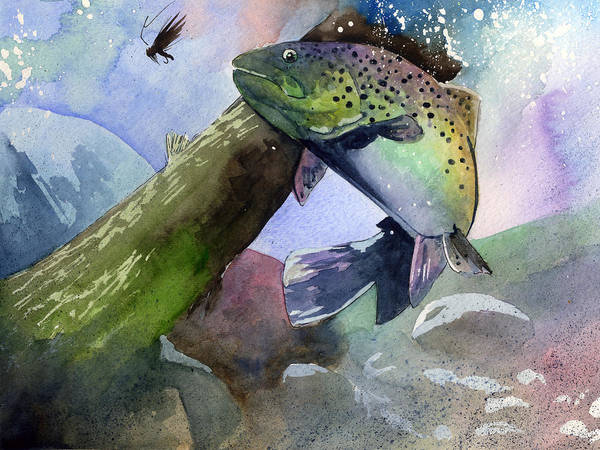 Trout Watercolor Wall Art - Painting - Trout And Fly by Sean Parnell