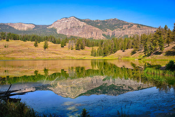 Photograph - Trout Lake Reflections Limited Edition by Greg Norrell