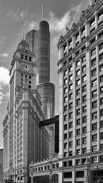 Wall Art - Photograph - Trump And Wrigley In Harmony by Christine Till