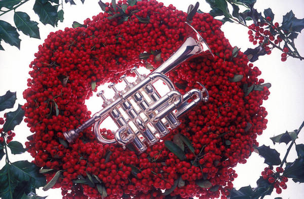 Trumpet Photograph - Trumpet On Red Berry Wreath by Garry Gay