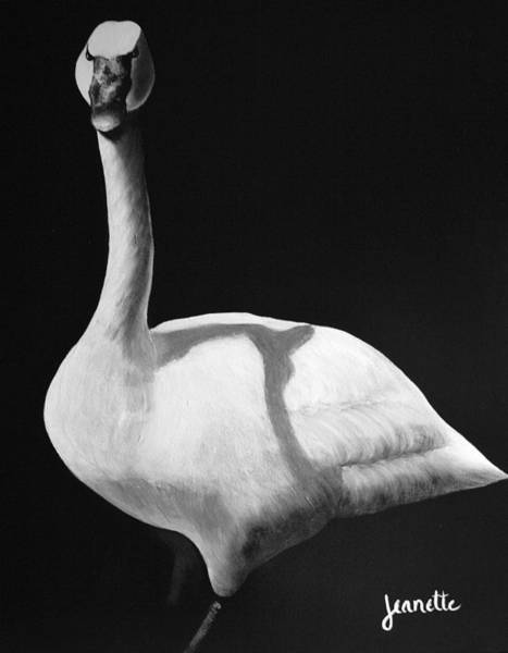Painting - Trumpeter Swan by Jeanette Fellows