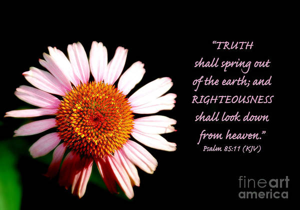Photograph - Truth And Righteousness by Lincoln Rogers