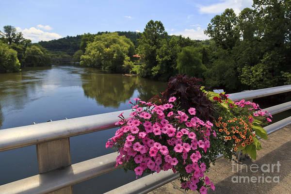 Photograph - Tuckasegee River by Jill Lang