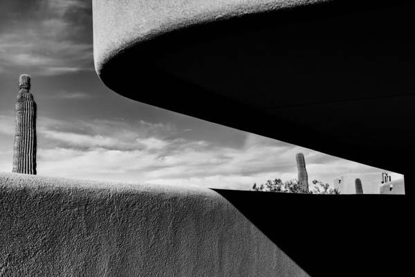 Saguaros Photograph - Tucson by Joseph Smith
