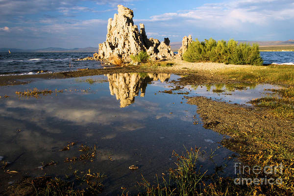 Photograph - Tufa Tide Pool by Adam Jewell