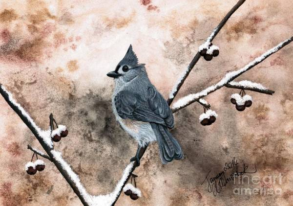 Titmouse Painting - Tufted Titmouse by Amy M Art Studio