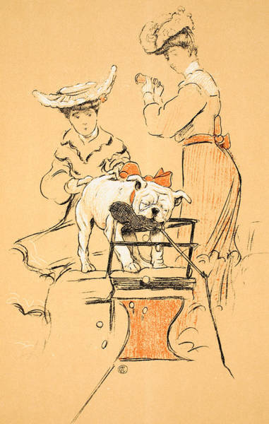 Naughty Dog Wall Art - Painting - Tug Of War by Cecil Charles Windsor Aldin