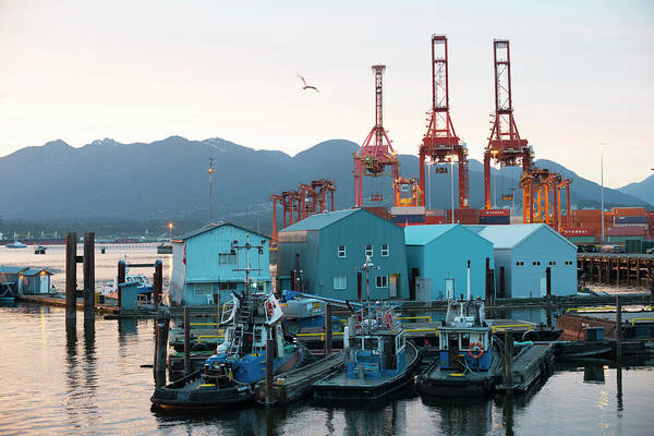 Port Of Vancouver Wall Art - Photograph - Tugboats And A Shipping Yard In Front by David Zentz