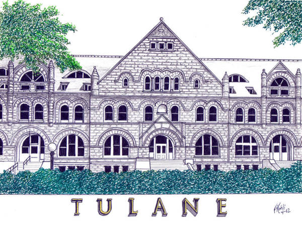 Pen And Ink Drawing Drawing - Tulane by Frederic Kohli