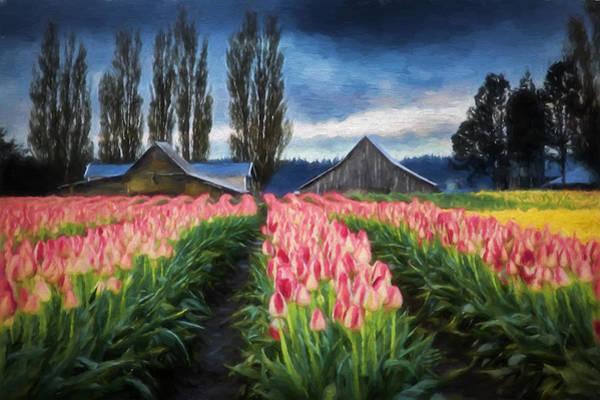 Photograph - Tulip Farm by Mary Jo Allen